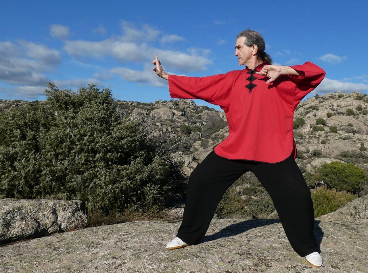 chi-kung-profesor-curso
