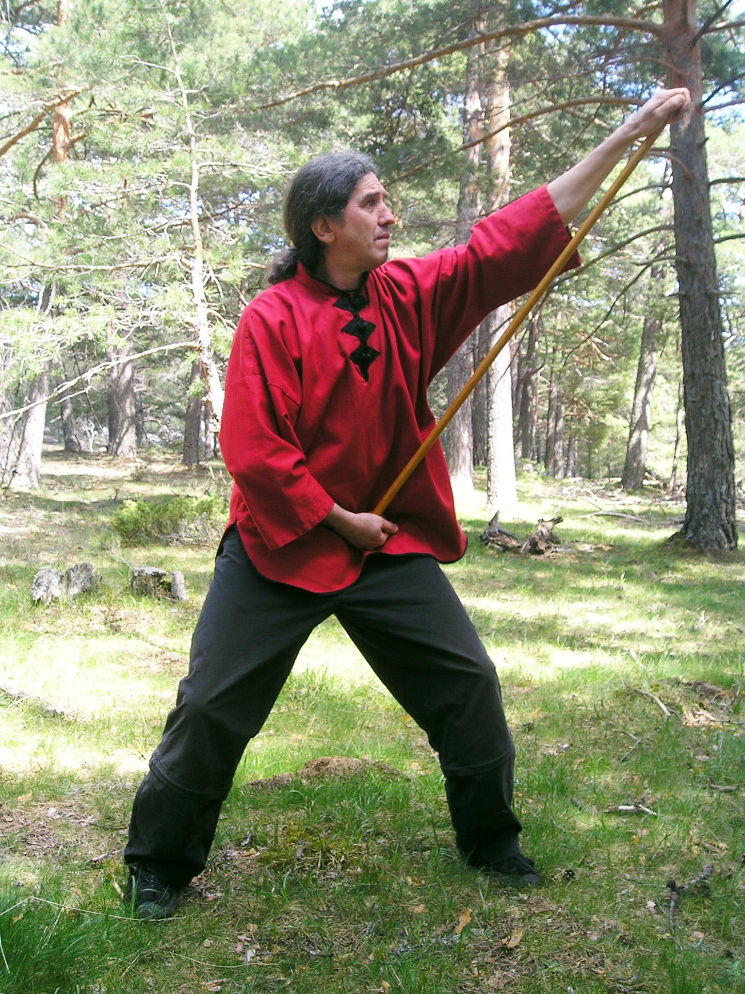chi-kung-profesores-palo