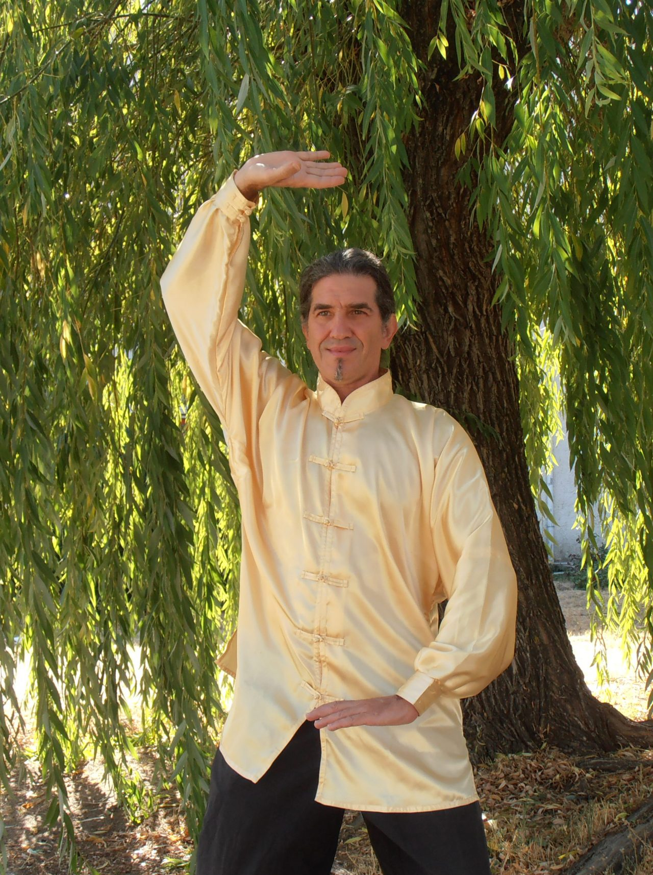 cursos-chi-kung-estomago